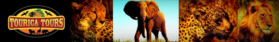 TOURICA  TOURS - your absolute African safari experience